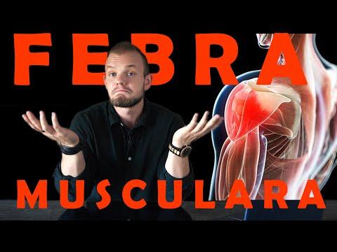 Conteaza Daca Faci Febra Musculara?